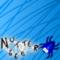 Nutter666