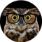 OwlTheHipster