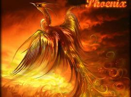 Phoenix-darkhunter