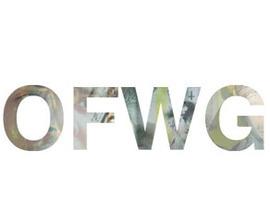 wolf781