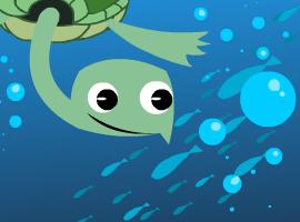 turtleco