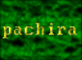 Pachira