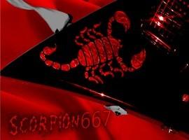 Scorpion667
