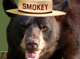 SmokeyTehBear