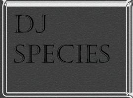 DJ-Species
