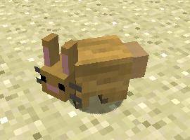 bunnyfaceperson123