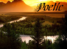 poetic29
