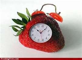 Strawberrysab