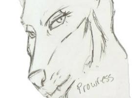 Prowress