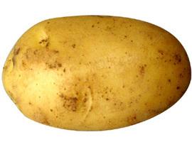 PotatoBurglar