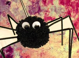 Spiderwebbie