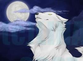 herowolf111