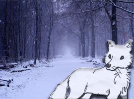 WinterFoxBR