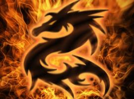 Dragonhermit