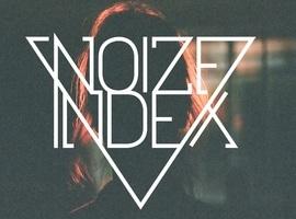 NoizeIndex