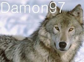 Damon97
