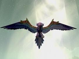 Ravencoar