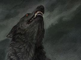 wolfregis