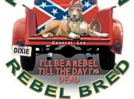 rebelbred
