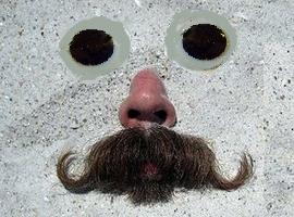 TheMustache