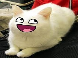 catsniper27