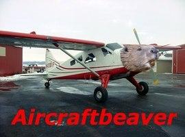 Aircraftbeaver