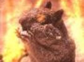 PyromaniacLVI