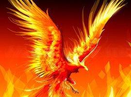 Phoenix51