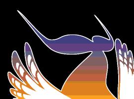 skywhaler