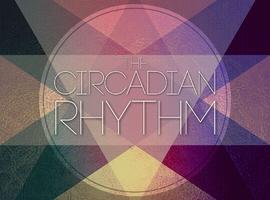 thecircadianrhythm
