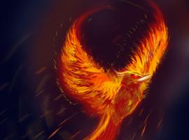 BirdGVee