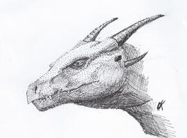 DragonKeeper345