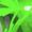 zelp's icon