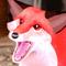 FoxiFyer