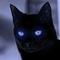 CatThatLovesGames
