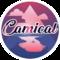 cammeocam
