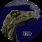 ibdinosaur