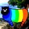 backgroundcat